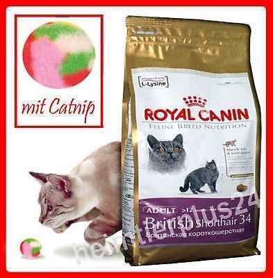royal canin british shorthair 10kg ebay. Black Bedroom Furniture Sets. Home Design Ideas