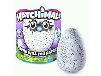 Hatchimal - purple