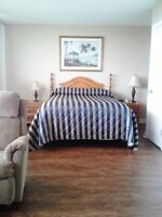 Furnished Bachelor Suite, Weekly/Monthly Rates, $1100 month
