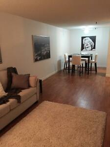 South End - 2 Bedroom - Across from Dal - Available Now!!