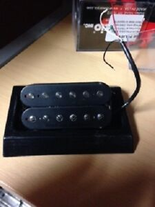 Seymour Duncan Pegasus F-Spaced/ Trembucker.