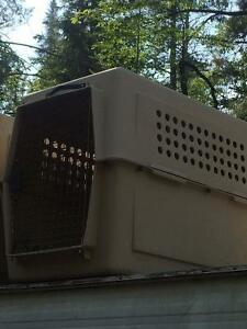 dog, puppy crate SOLD PENDING PICK UP