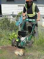 Stump grinding and removals.