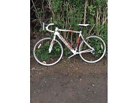 LARGE CLAUD BUTLER SAN REMO ROAD RACER LIGHTS MUDGUARDS WIRE LOCK SERVICED READY TO GO