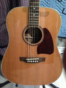 Accoustic guitar hand crafted from exotic woods - may trade