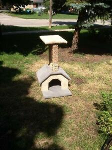cat house and posts