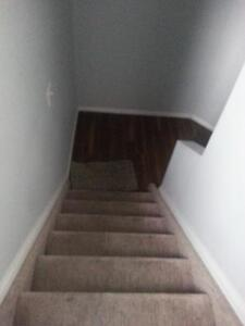 1 Bedroom basement suite 1minute walk from C-TRAIN Station