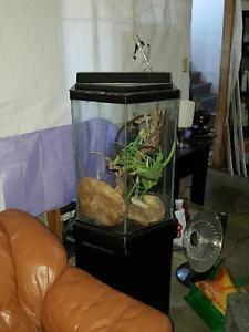 Octogonal terrarium tank (or aquarium), wood stand/accessories