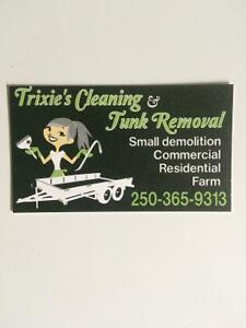 Trixies cleaning and junk removal