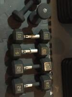 Dumbbells, kettlebell, bench, curl bar, stepper, exercise bike