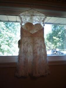 Ivory Lace Dress for sale - brand new with tags Kitchener / Waterloo Kitchener Area image 3