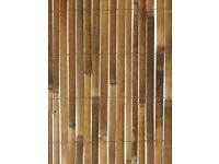3 x Brand new Bamboo Screening Fence for sale