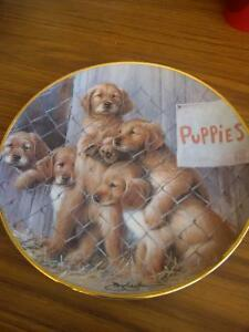 Collector's Dish - Puppies by ASPCA Prince George British Columbia image 1