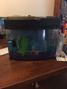 Fish tank Black Hill Cessnock Area Preview