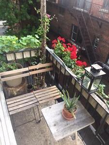 Bel plateau appartement en face du Parc La Fontaine