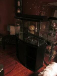 Approx 50  Gallon Bowfront  Aquarium With Stand filter light