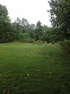 Kettle Creek Front Lot Priced To Sell London Ontario image 6