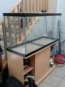 Clean 90 gal Tank, Beautiful Stand, Filter, etc. ready to go!