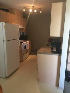 2 Bedroom 2 bathroom Fully furnished Downtown Condo for rent