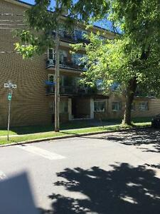 $700 – Renovated 1 Bdr Apt Heated; 1 Block from Lachine Canal