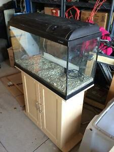 40 gallon fish tank with filter, air bubbler and much more