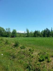 lot for sale!! Grade 1 government approved and surveyed! !
