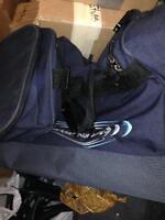 Ski bag for travel