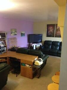 Acerage basement suite for rent.