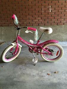 16 inch Supercycle