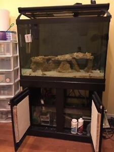 64 gallons fish tank with sump and live rocks