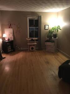 Room Available ASAP / Roommate Wanted