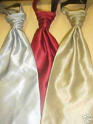 (Shar-pei wrinkle knot  tuxedo longtie Silver)