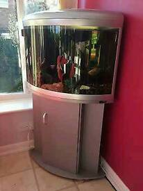 Fishtank with cabinet silver