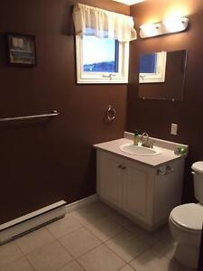 Looking for a roomie for my awesome condo near Quidi Vidi! St. John's Newfoundland image 6