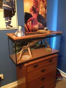 Reptile cage and lamp