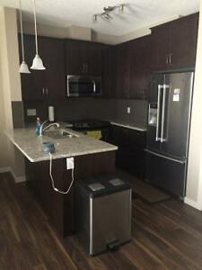 room for rent in a brand new towmnhouse in copperfield