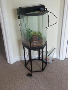 25 gallon octagon tank and stand