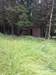 8.79 acres of seclusion and privacy Williams Lake Cariboo Area image 7