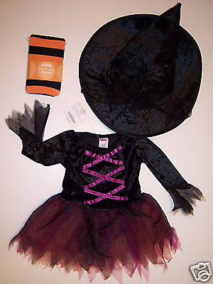 NWT Gymboree Witch Halloween Costume Hat & Tights 12-18 or 18-24 Months (12-18 Months Halloween Tights)