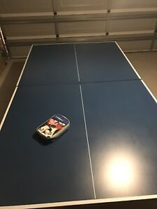Table tennis table Greenfields Mandurah Area Preview