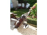 Skymax Sport set 9 golf clubs and trolley