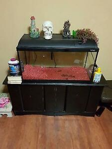 25 gallon fish tank accessories chemicals everything you need +