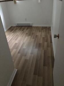 appartement à louer Saguenay Saguenay-Lac-Saint-Jean image 5