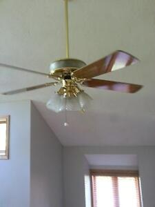 Ceiling fan 52 inch with lights