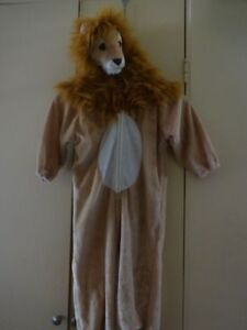 Costume for child_2T/3T/4-6Yr- Like new Kitchener / Waterloo Kitchener Area image 3
