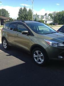 2013 Ford Escape Familiale
