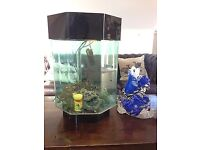 Hexagon Aquarium Fish tank,Ready To Use With Everything Needed.Plastic Not Glass
