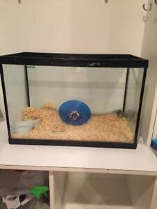 Aquarium & hamster $20 for all