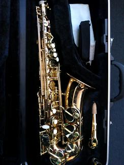 """solo"" Alto Saxophone, Near New, +free extras"
