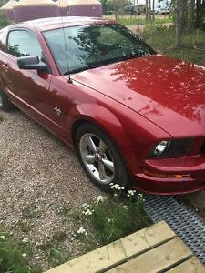 2009 Ford Mustang Fully-loaded Coupe (2 door)